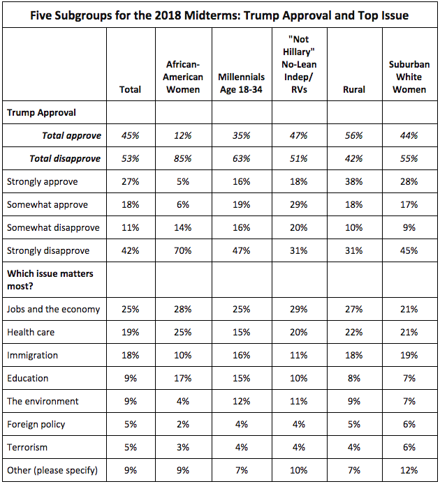 Trump approval and top issues by voter subgroups for 2018 midterms